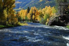 Conejos River in the Fall