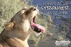 Notable Quotable: Perhaps We Are Stronger...