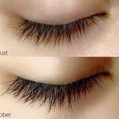 Eyelash growth using our Patent REJUVENIQUE OIL INTENSIVE from Monat global