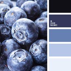 бледно-голубой, монохромная синяя цветовая палитра, монохромная цветовая палитра, небесный, оттенки синего, пастельный синий, подбор цвета, светло-синий, серебристо-голубой, серо-голубой, темно-синий, цвет голубики, цвет ягод
