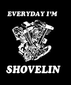 Perfect! -shovelhead