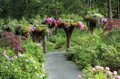 Upside Down Tree Flower Towers| Glacier Gardens Rainforest Adventures | Juneau, Alaska