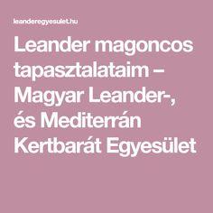 Leander magoncos tapasztalataim – Magyar Leander-, és Mediterrán Kertbarát Egyesület