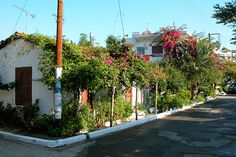 Sarti town cottage, Halkidiki, Greece Halkidiki Greece, Greece Pictures, Sidewalk, Cottage, Country, Beach, Places, Greece, Vacation