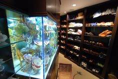 Custom Residential Aquarium in a closet by Living Color Aquariums
