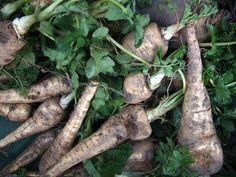 Nalewka na bazie korzenia pietruszki Irish Cream, Natural Medicine, Asparagus, Carrots, Detox, Food And Drink, Homemade, Vegetables, Opera