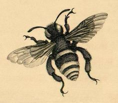 bee tattoo-ideas
