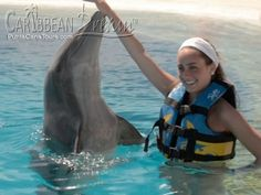 Dolphin Adventure | Punta Cana Tours and Excursions Punta Cana All Inclusive, Dont Be Scared, Adventure Tours, Gentle Giant, Once In A Lifetime, Small Groups, Dolphins, Mammals, Swimming