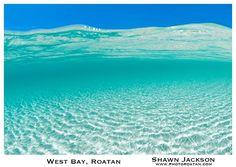 Shawn Jackson   ·  West Bay, Roatan.
