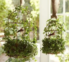 LOVE how these birdcages are suspended by berlap!