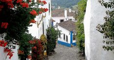 Portugal, Blog