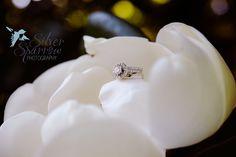 Gorgeous Wedding Rings on Blooming Magnolia in Nashville Tennessee - Photo by Silver Sparrow Photography   #NashvilleWedding #BelleMeadePlantation #WeddingRing #DestinationWeddingPhotographer
