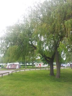 Jubilee Park Camping and Caravan Park. Woodhall Spa, Lincolnshire. Camping. Summer. Travel. Holiday. Day Out. Family. Retreat. Tent. Go Outdoors.
