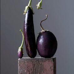 lynn karlin: eggplant family (raw art)