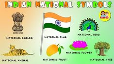 Preschool Charts, Preschool Art Activities, Creative Activities For Kids, Class Activities, National Symbols, National Flag, Baby Rhymes Video, Gk Questions And Answers, Math Questions