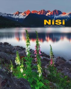 NiSi Canadian Website is now live, up and running! 📸😍 Check out the link on our bio😊 ========================== Tag a friend in the comment who might. Up And Running, More Photos, Vancouver, Landscape Photography, Filters, Universe, Cinema, Mountains, Website