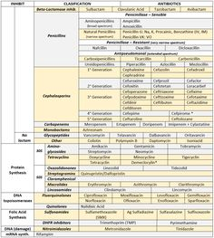 ANTIBIOTICS CHEAT SHEET :) Also, REMEMBER!!!! * Sulfonamides compete for albumin with: • Bilirrubin: given in 2°,3°T, high risk or indirect hyperBb and kernicterus in premies • Warfarin: increases...