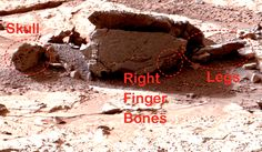 Alien Body Discovered In NASA Curiosity Rover Photo! UFO Sighting News. Feb 2013.  President Obama
