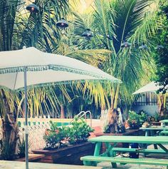 Sweetwater Beer Garden, Miami @ photo: Sweetwater Beer Garden
