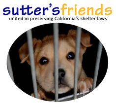 Animal Law, Preserves, Dog Food Recipes, Shelter, Join, The Unit, California, Facebook, Pets