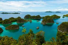 Raja Ampat, Indonesia -- This Indonesian archipelago in West Papua province looks like paradise with its steep, jungle-covered islets and surrounding turquoise waters. Best Countries To Visit, Cool Countries, Cool Places To Visit, Places To Travel, Travel Destinations, Best Resorts, All Inclusive Resorts, Day Trips From Lisbon, Couples Resorts