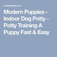 Modern Puppies - Indoor Dog Potty - Potty Training A Puppy Fast & Easy