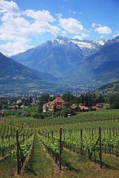 Meran, South Tyrol, Alto Adige, Italy.