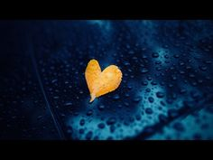 Abraham Hicks 2015 - Someone dear's transition doesn't have to be so hard on you (new) - YouTube