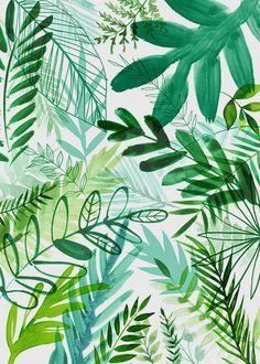 Jungle Forest Greenery Plants illustration © magrikie