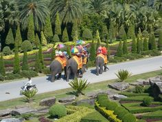 Jardim botânico Nong Nooch Tropical Botanical Garden, Pattaya - Thailand