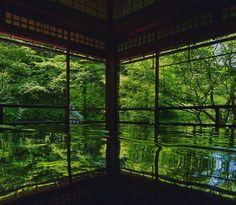 """新緑の香りと絶景にひたる静かなる休日京都瑠璃光院の""""若紅葉""""の美しさたるや"""