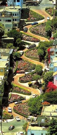 Lombard St. in San Francisco, California***One of the most famous streets in the world.  I would love to go and see the wild birds that I hear live there.