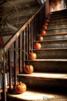 Pumkin stairs