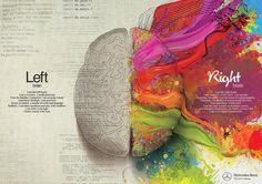 cervello sinistro e cervello destro.