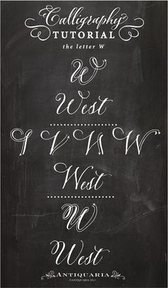 "Calligraphy Tutorial | the Capital Letter ""W"" / by Antiquaria Design Studio / typography / hand lettering / DIY instructions"