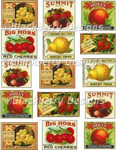 decoupage paper, collage sheet,vintage food crate labels,vintage fruit labels, cherries,berries,grapes,pears,peaches