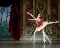 Polina Semionova Polina Semionova, Ballet Dance, Statue, Live, Fictional Characters, Beauty, Ballet, Fantasy Characters, Dance Ballet
