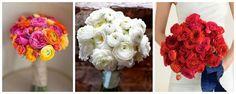 Le Nozze di Livia: Scegliamo il bouquet! http://lenozzedilivia.blogspot.it/2014/06/scegliamo-il-bouquet.html
