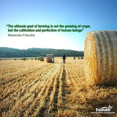 76 Best Agriculture Quotes Images Country Life Country Living