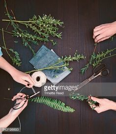 Stock Photo : Close up of florists working with plant trimmings