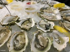 Close-up of a seafood raw bar's half shell oyster platter served on ice with lemon slices and hot sauce Raw Oysters, Raw Bars, Lemon Slice, Hot Sauce, Platter, Robin, Seafood, Shell, Ethnic Recipes
