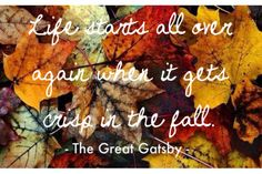 Life starts all over again when it gets crisp in the fall (The Great Gatsby)