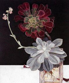 Sanseveria( in Glass (Echevarria) - Cressida Campbell Australian , b.1960- Decorative Bookplate , 28cm x 22cm,