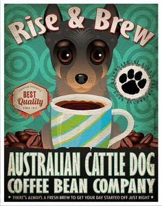 Australian Cattle Dog by melisa