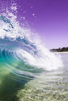 tulipnight:  Waves! by PacificCove on Flickr.
