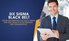 Certified Six Sigma Black Belt Professional