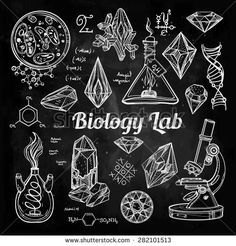 Hand drawn science beautiful vintage Biology Lab icons sketch set . Vector isolated illustration. Back to School. Doodle equipment, gemstones .Biology geology alchemy chemistry and tattoo elements.