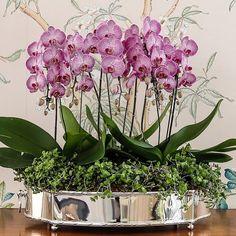 Orchid Flower Arrangements, Orchid Planters, Artificial Flower Arrangements, Beautiful Flower Arrangements, Flower Centerpieces, Flower Vases, Flower Decorations, Beautiful Flowers, Artificial Orchids