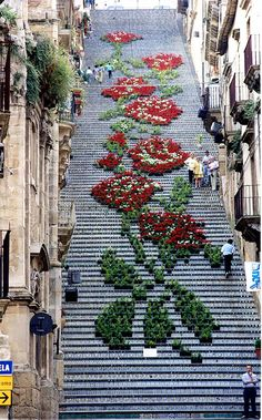 "The Santa Maria del Monte is a 142-step staircase made up of thousands of individual terra cotta tiles. It is often used as a.as a backdrop for various festivals in Caltagirone, Sicily. The floral theme shown here is part of the ""Scala Infiorata,"" or the floral festival."