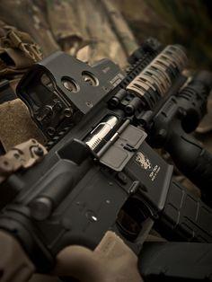 Beautiful AR-15 - http://www.rgrips.com/en/article/80-blaser-ga45